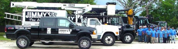 The various small to large trucks Jimmy's Tree Service uses