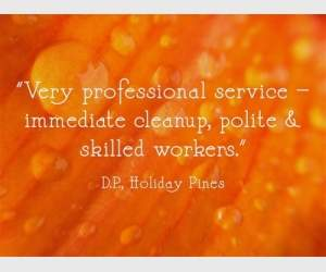 """Very professional service - immediate cleanup, police & skilled workers."" D.P., Holiday Pines"