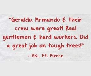 """Geraldo, Armando & their crew were great! Real gentlemen & hard workers. Did a great job on tough trees!"" - P.N., Ft. Pierce"