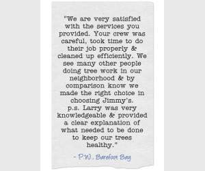 """We are very satisfied with the services you provided. Your crew was careful, took time to do their job properly & cleaned up efficiently. We see many other people doing tree work in our neighborhood & by comparison know we made the right choice by choosing Jimmy's. p.s. Larry was very knowledgable & provided a clear explanation of what needed to be done to keep our trees healthy."" P.W. Barefoot Bay"