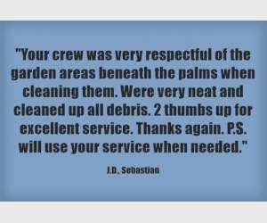 """Your crew was very respectful of the garden areas beneath the palms when cleaning them. Were very neat and cleaned up all debris. 2 thumbs up tor excellent service. Thanks again. P.S. Will use your service when needed."" J.D., Sebastian"