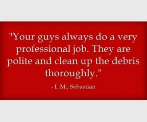"""Your guys always do a very professional job. They are polite and clean up the debris thoroughly. "" L.M., Sebastian"